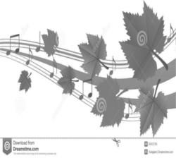 dj bielsko jesien muzyka